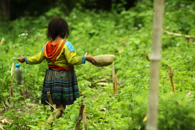 A girl chases grasshoppers in the grass to feed to her birds